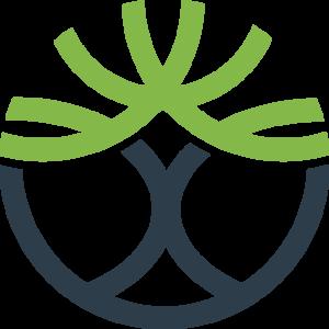 Caleon Logo